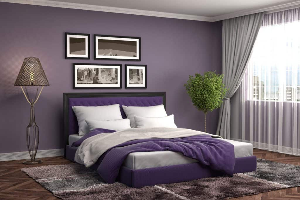 A gorgeous dark purple themed living room with purple beddings and a purple wall