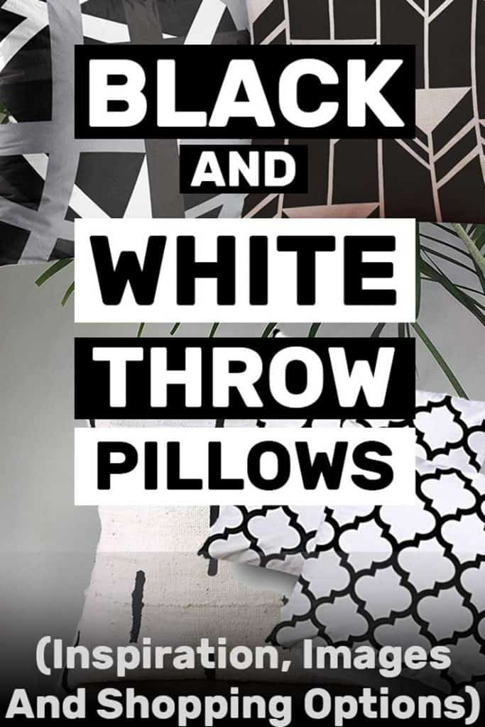 Black and White Throw Pillows (Inspiration, Images and Shopping Options!)