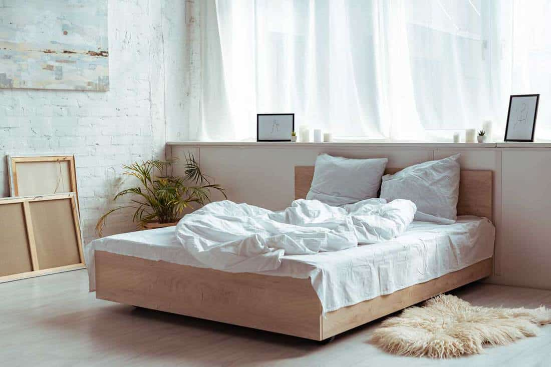 Do Bedrooms Need Windows And 10 Solutions For When They Don T Home Decor Bliss