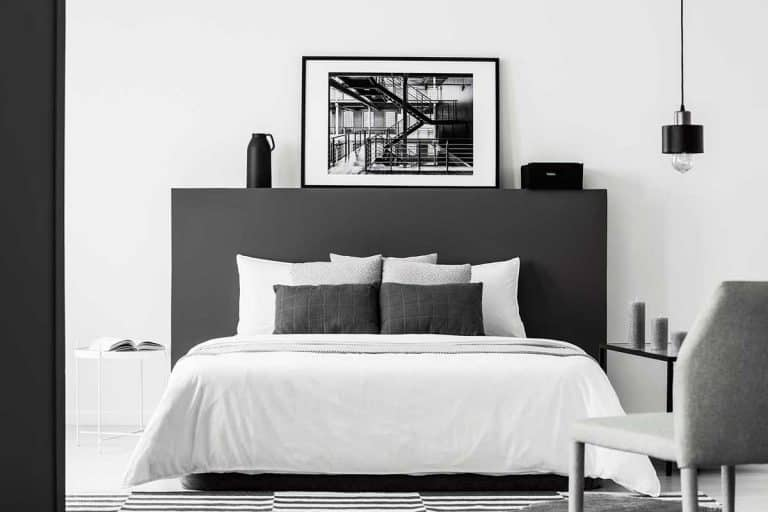 123 Black and White Bedroom Ideas (Inspiration Photo Post)