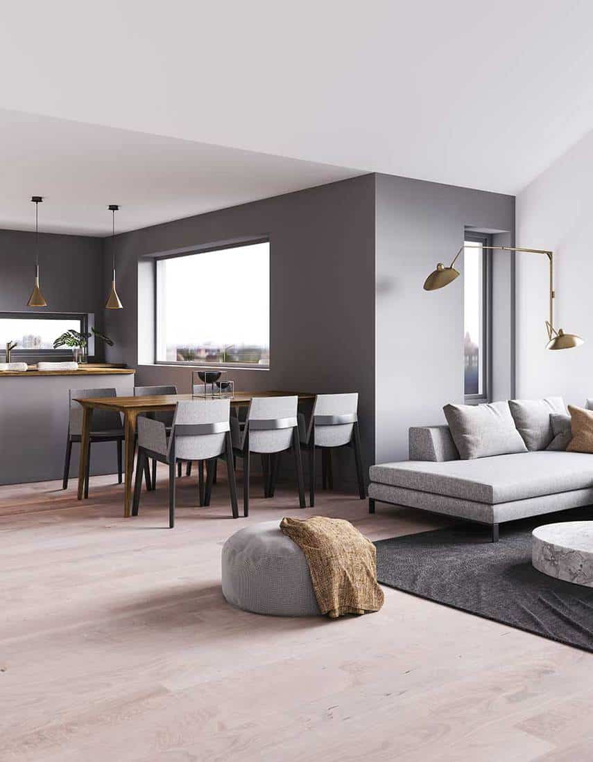 Modern grey living room and dining room