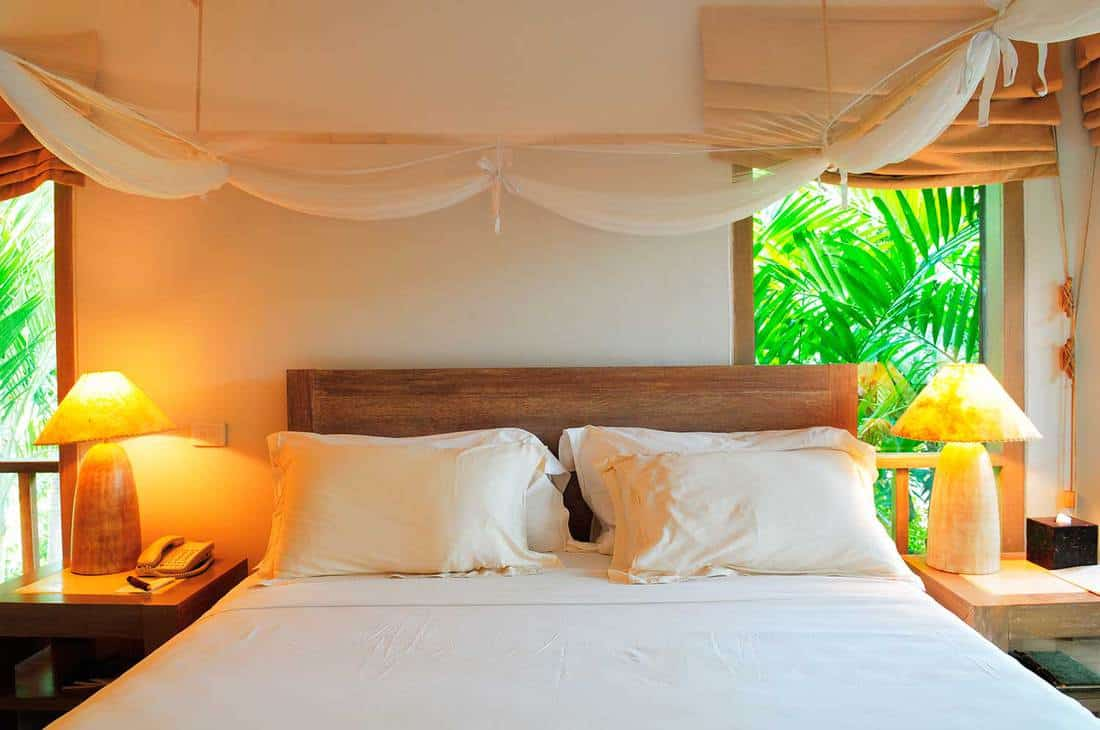 Tropical resort room