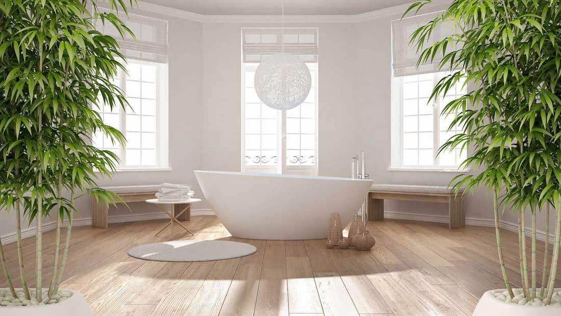 Zen interior bathroom with potted bamboo plant in minimalist scandinavian architecture