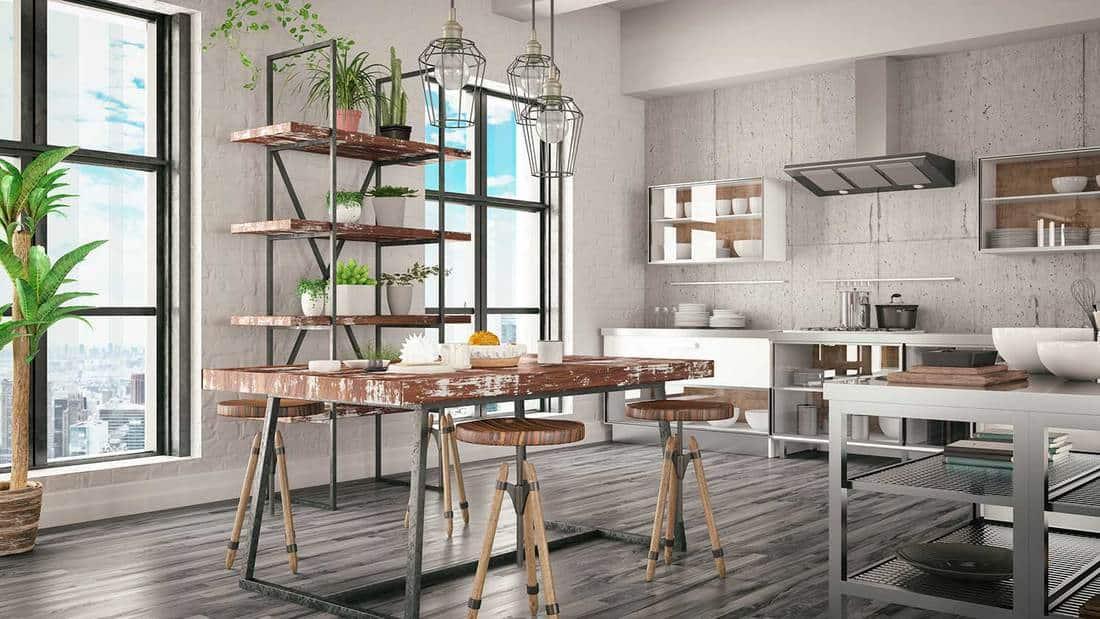 Apartment loft design kitchen interior with succulents