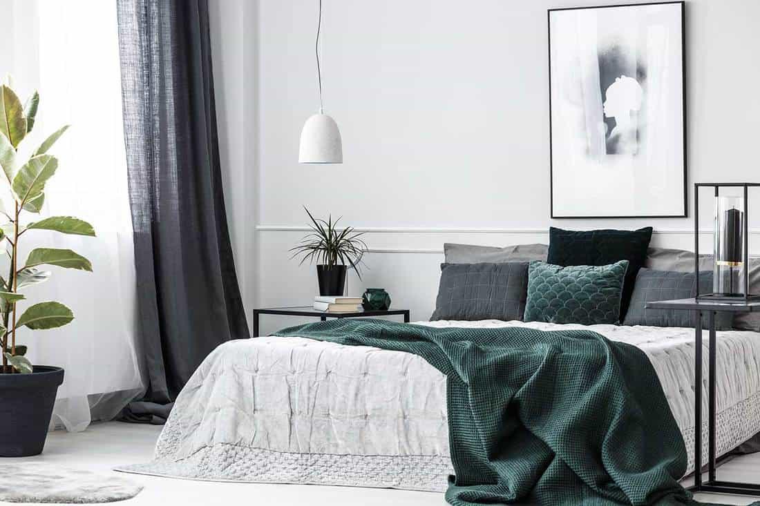 Elegant modern bedroom interior