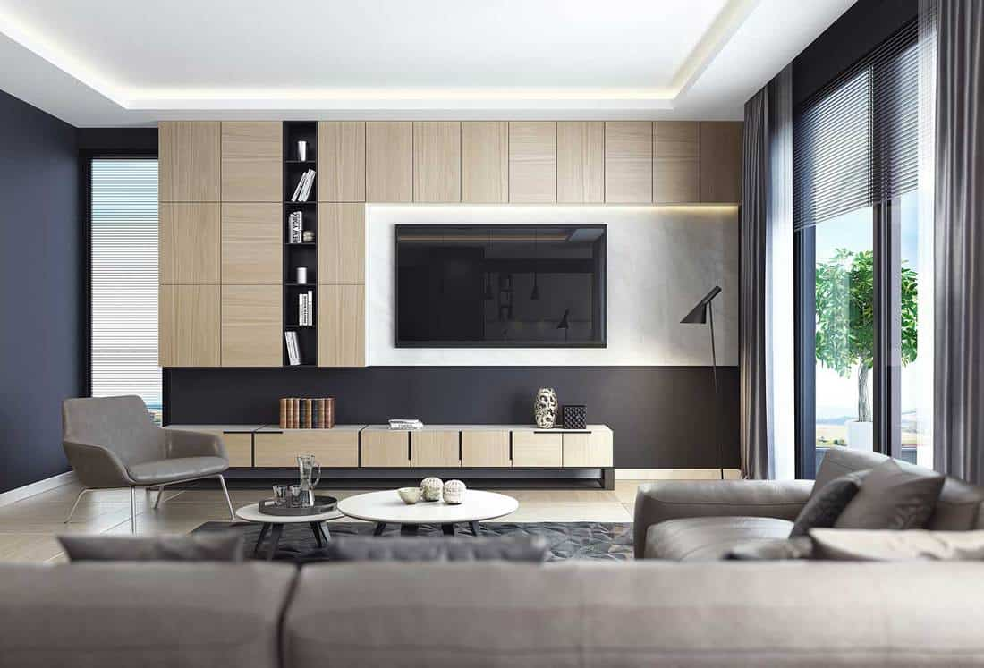 Luxury living room interior with leather sofa and TV