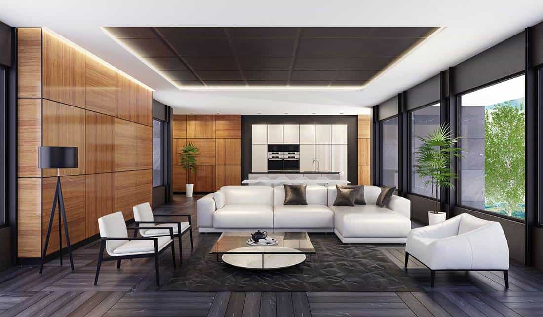 Luxury minimalist living room with kitchen and dining