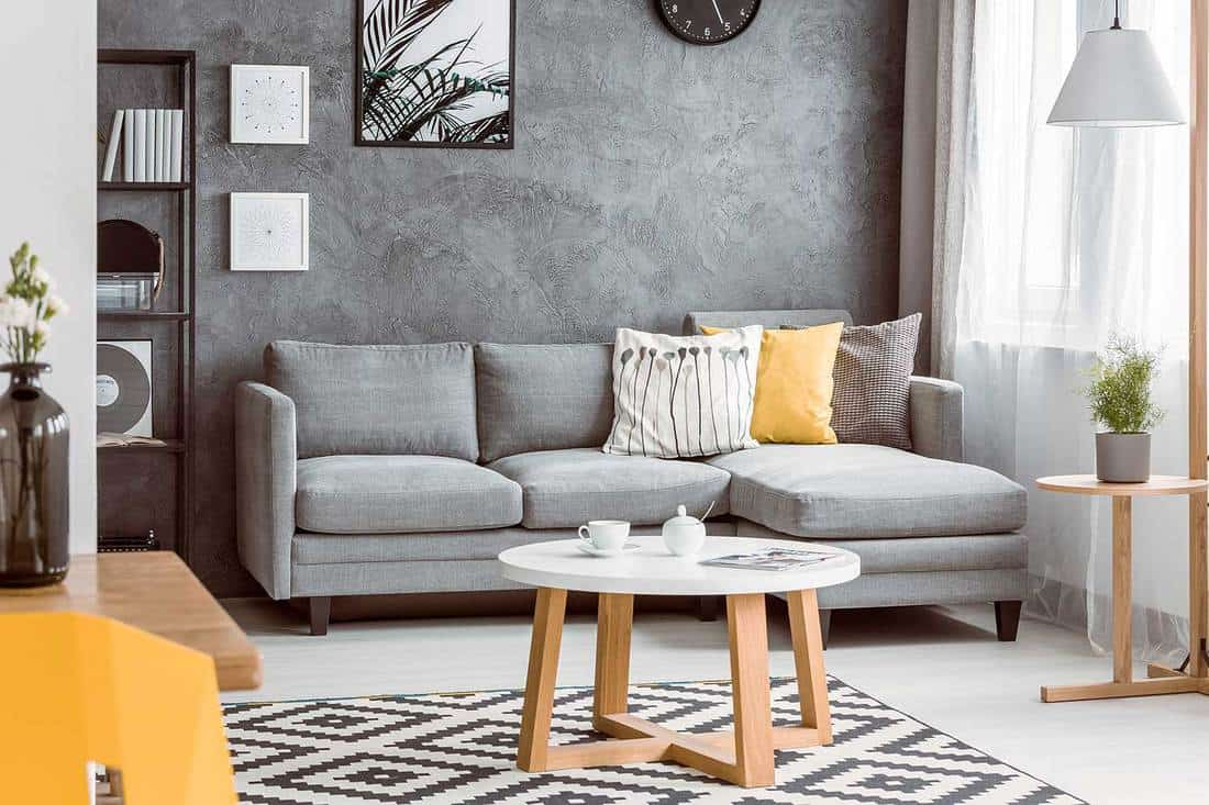 Modern living room interior with grey wall and cozy grey sofa