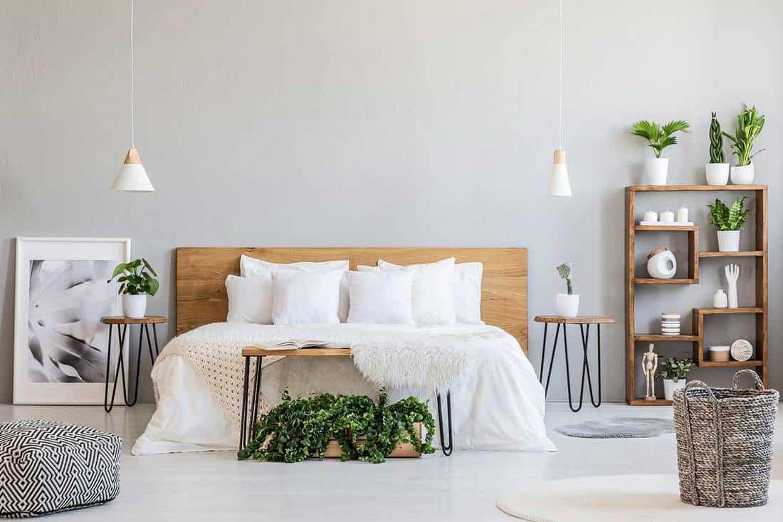 Scandinavian bedroom with cozy bedroom and house plants