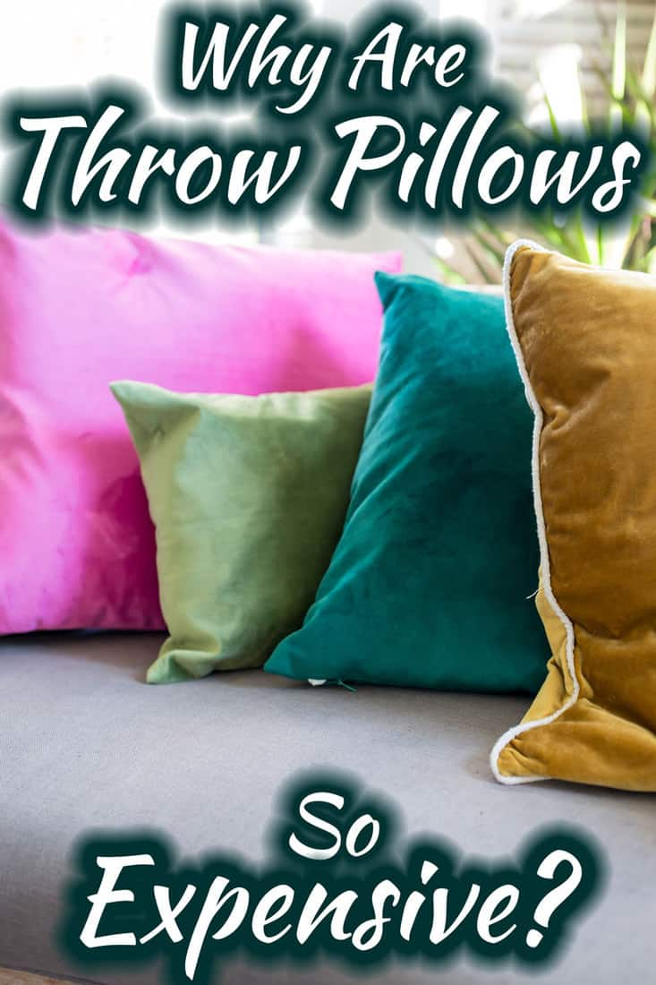 Why Are Throw Pillows so Expensive? - Home Decor Bliss