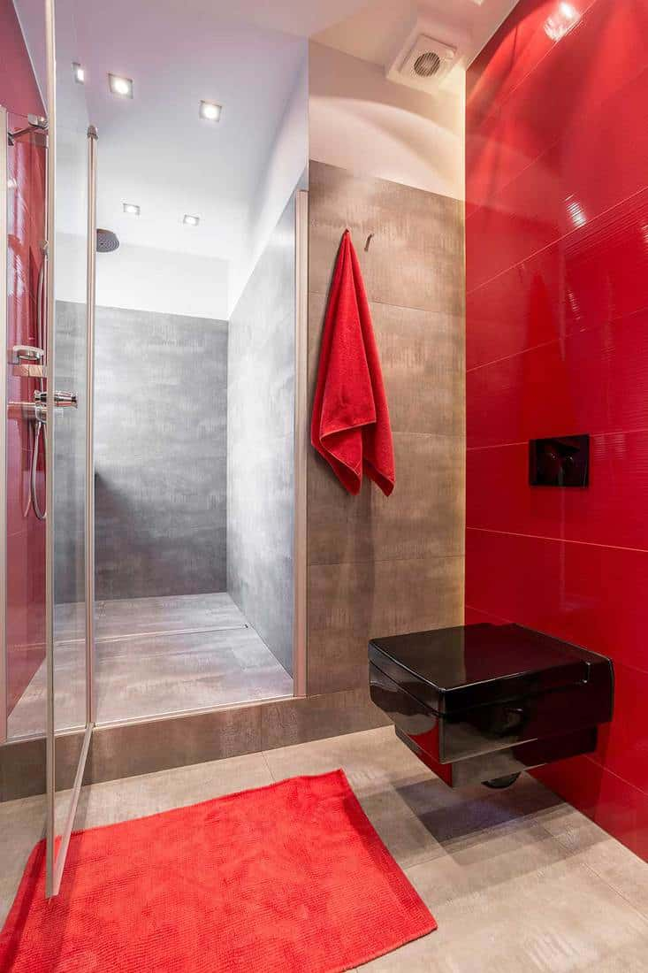 Bathroom with red wall and glazed shower