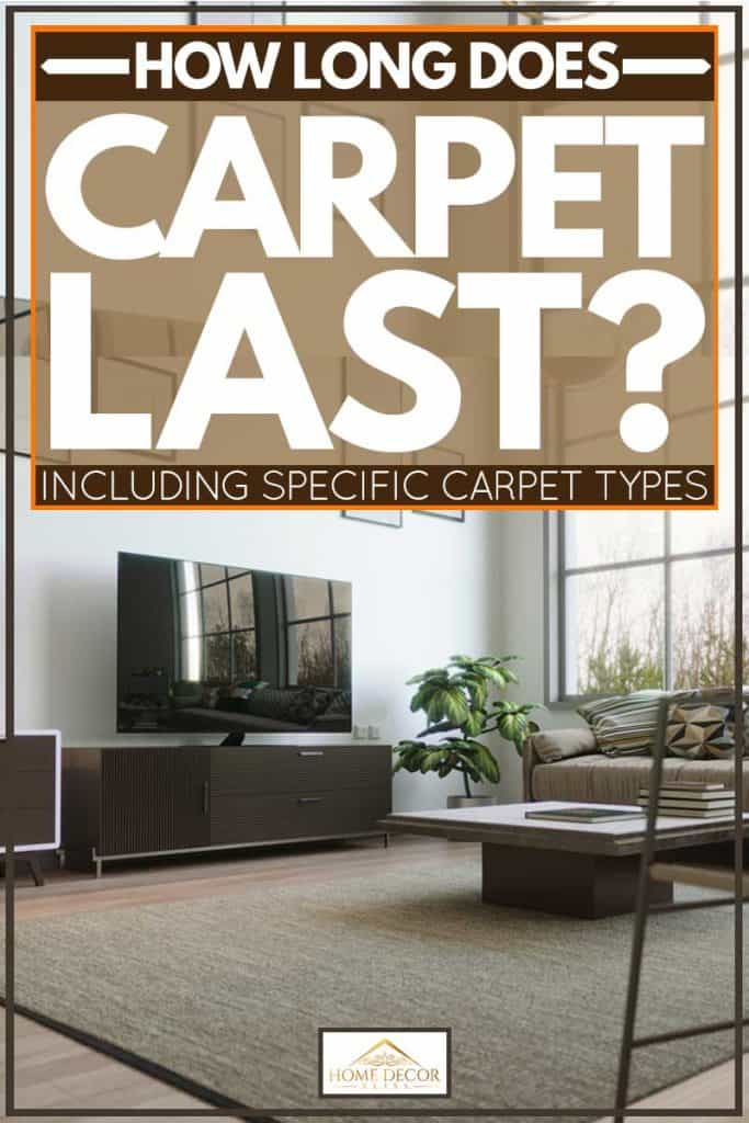 How Long Does Carpet Last? [Inc. specific carpet types]