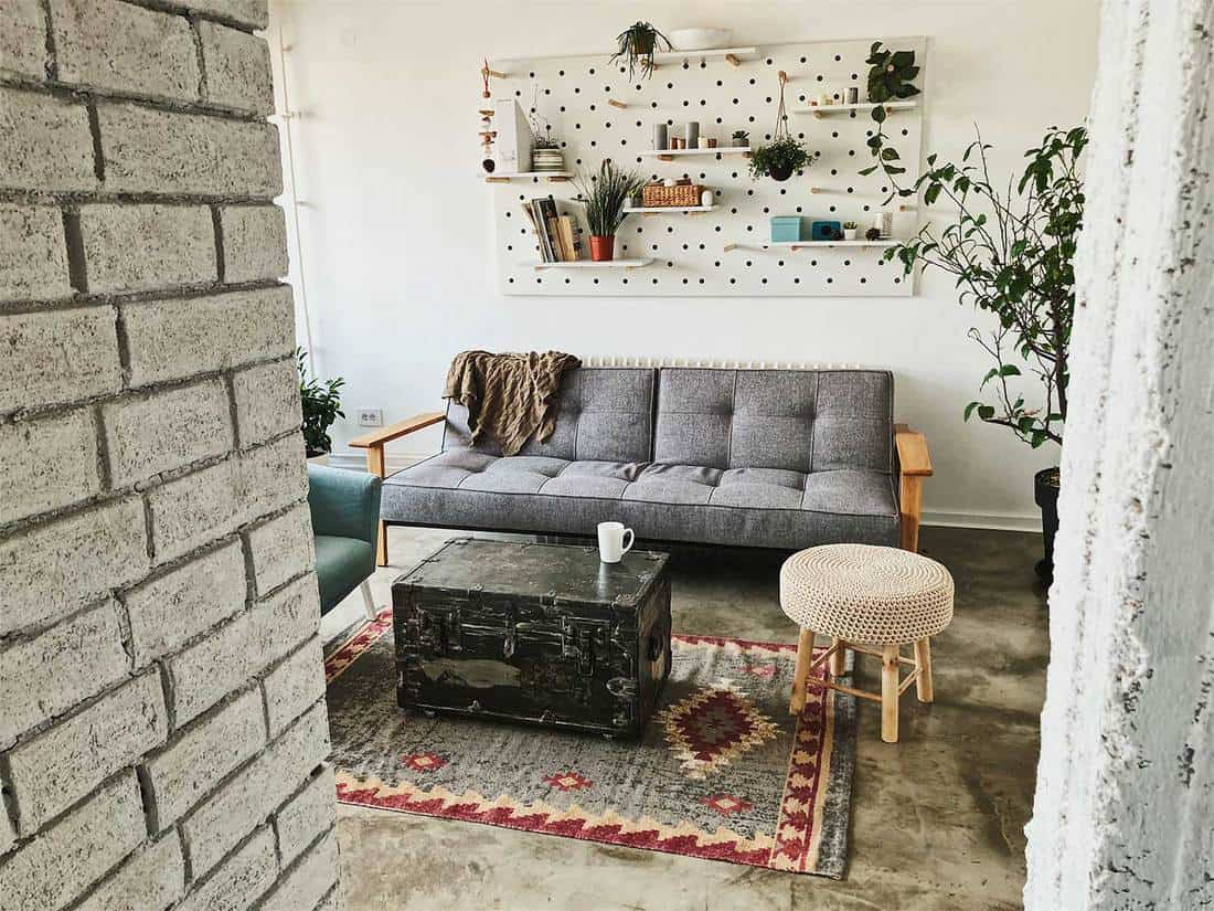 Interior detail of the authentic apartment living room with brick walls treasure chest coffee table, house plants and grey sofa