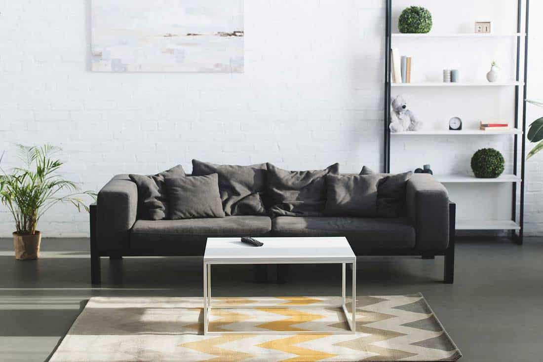 Modern living room interior with grey sofa, table and bookshelves