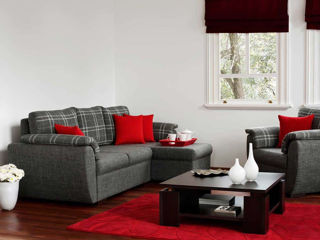 Modern living room with grey sofa, classy dark wood coffee table, red pillows and rug