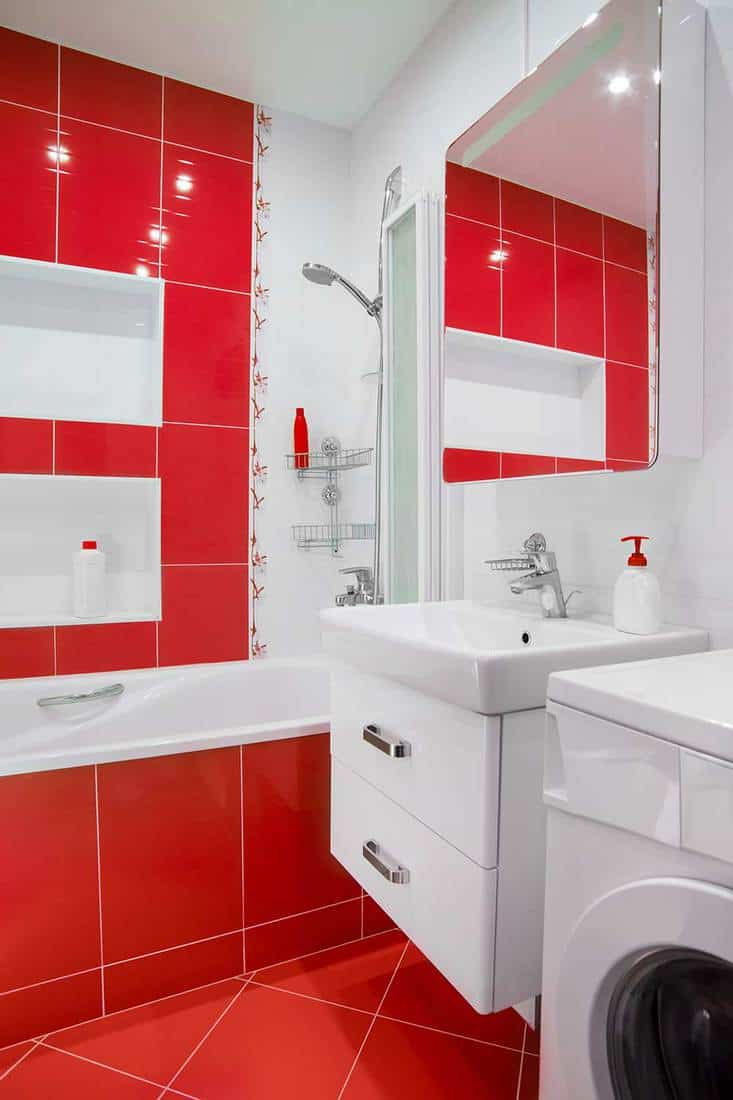 Modern small bathroom interior with red and white color