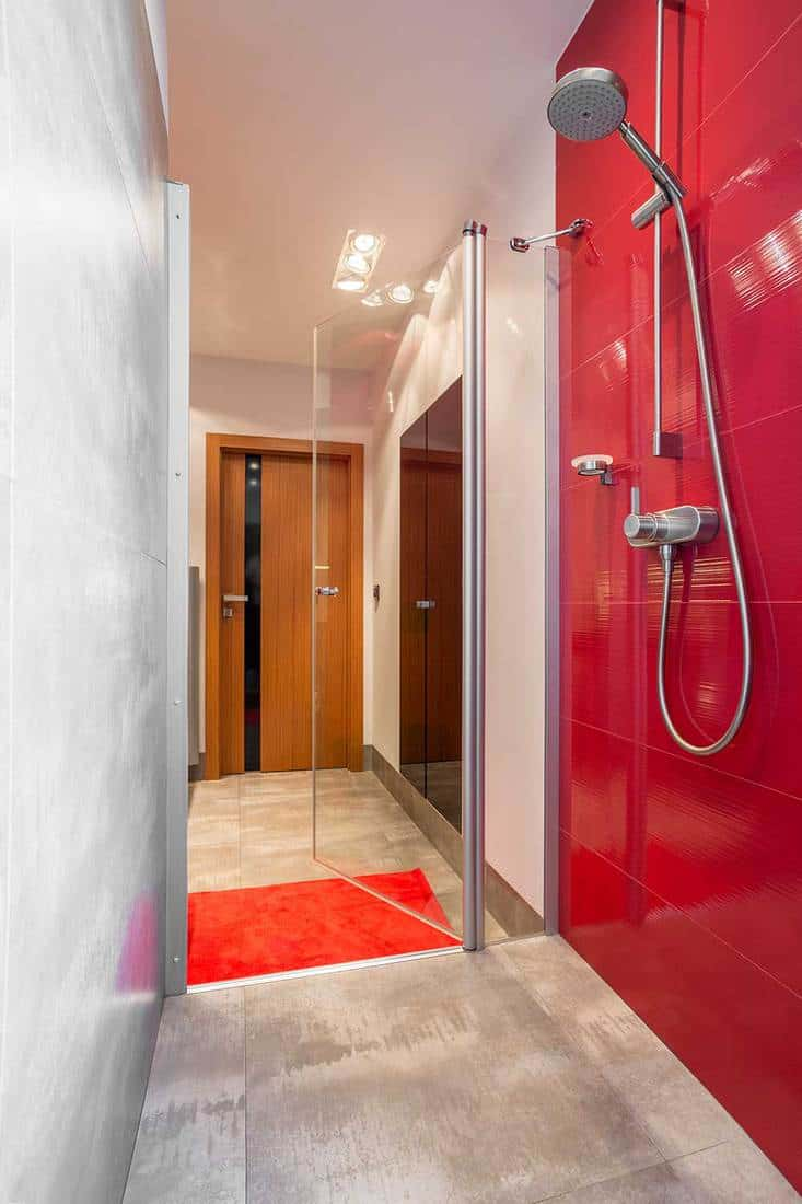 Narrow bathroom interior designed with shower and red and white wall