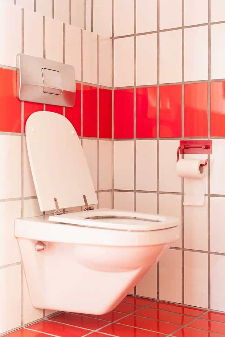 Red and white concept toilet