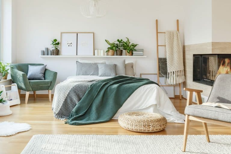 Modern Cozy bedroom with a tropical touch, What Should You Have in Your Bedroom? [11 Must-Have Items]