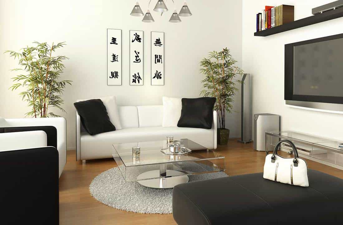 Black and white living room interior with TV, sofa set and glass coffee table
