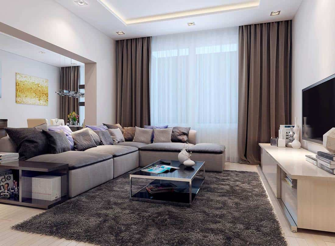 Contemporary living room with cozy grey sofa, throw pillows, coffee table on carpet and tv