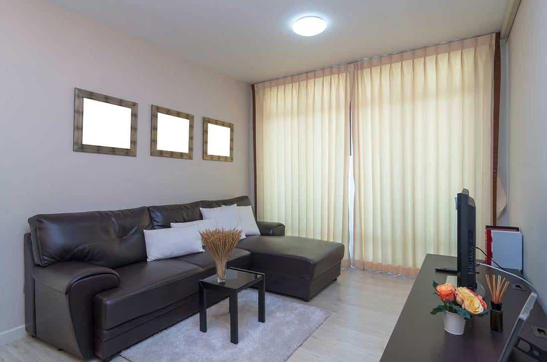 Cozy condo living room interior