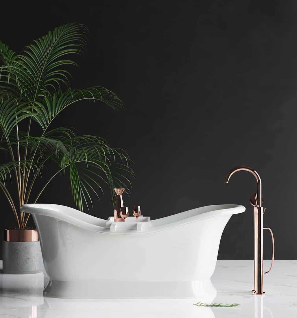 Large luxury minimalist bathroom with black wall, house plant and bathtub