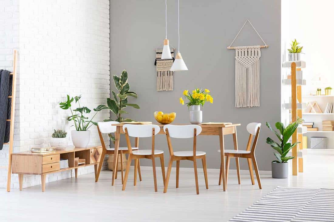 Modern dining room interior with plants, wooden furnitures and boho style decors