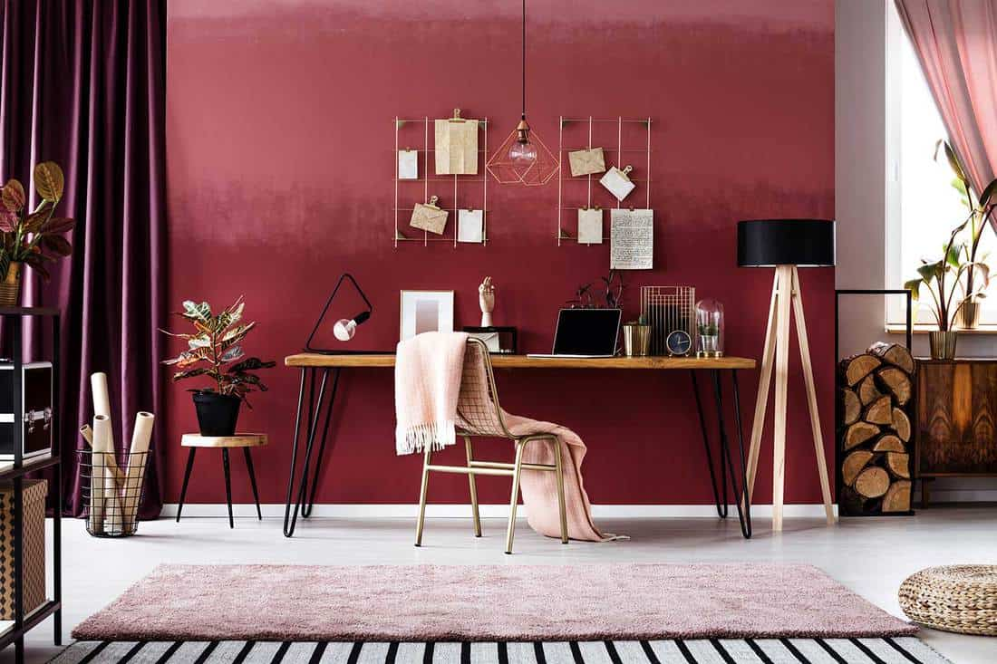 Pink blanket on metal chair next to wooden table in cherry home office interior with plant on stool