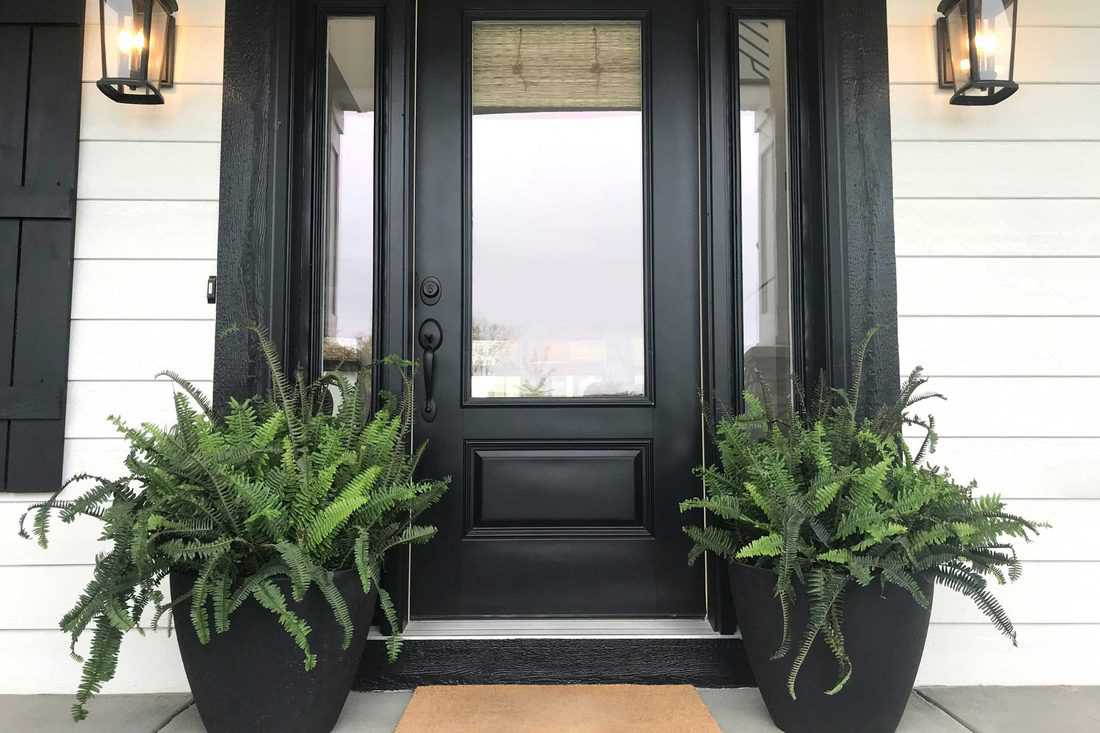 Black colored door with black framing and plants on pots
