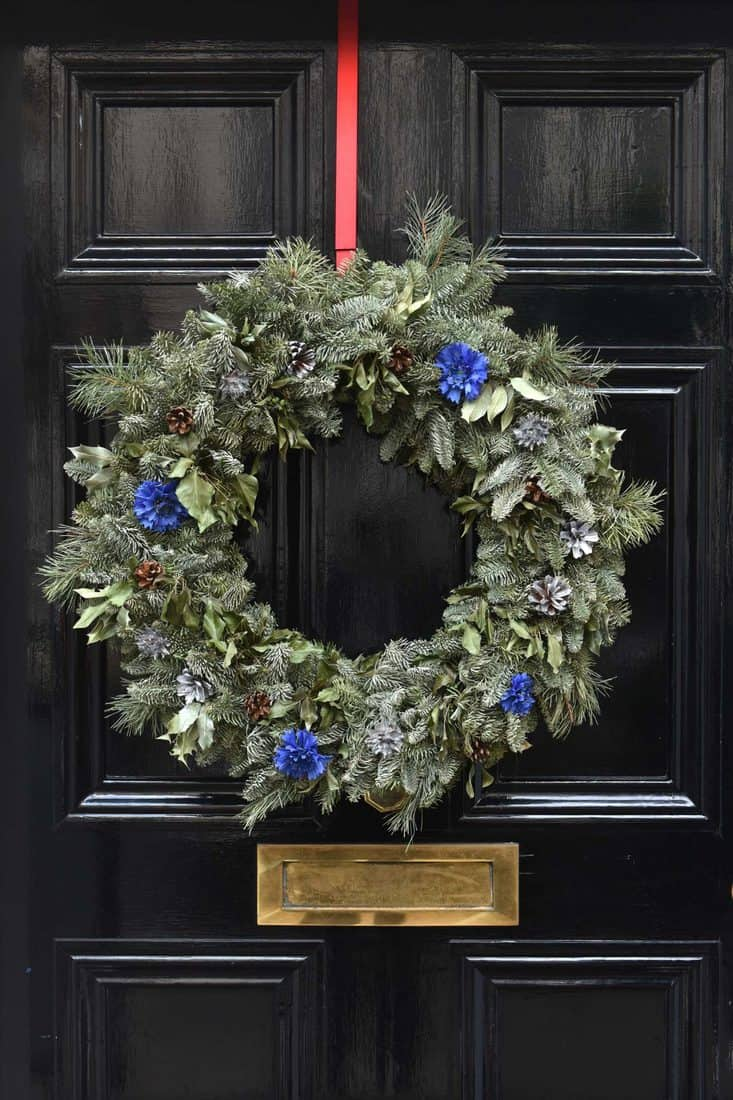 Black door with christmas wreath decoration with blue flowers attached