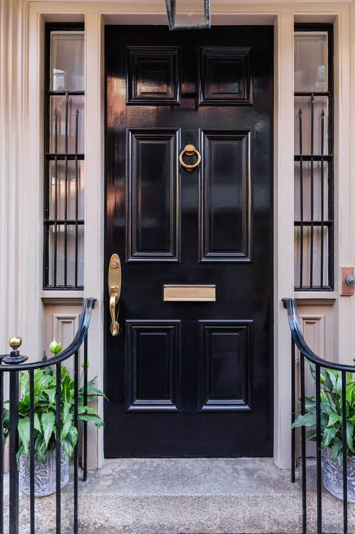 Black door with curved railings with plants place at each side
