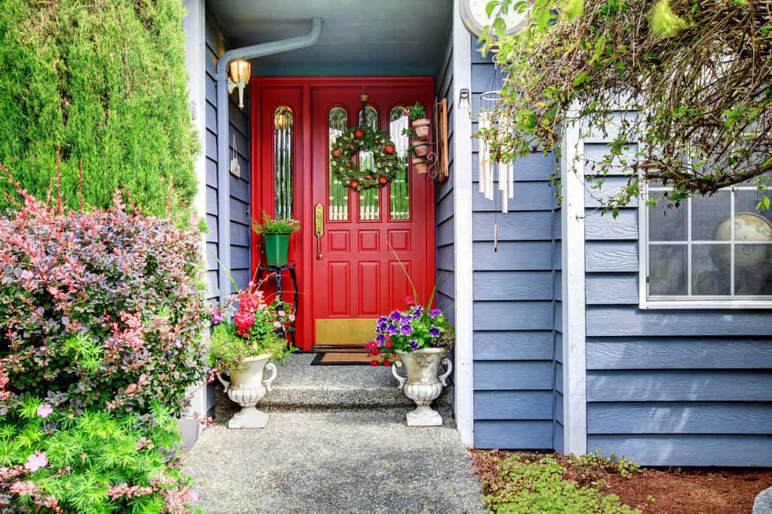 Blue colored walls and red door with plants placed at side