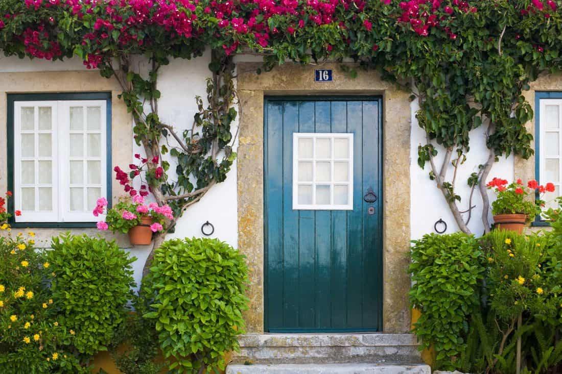 Blue door and garden themed facade