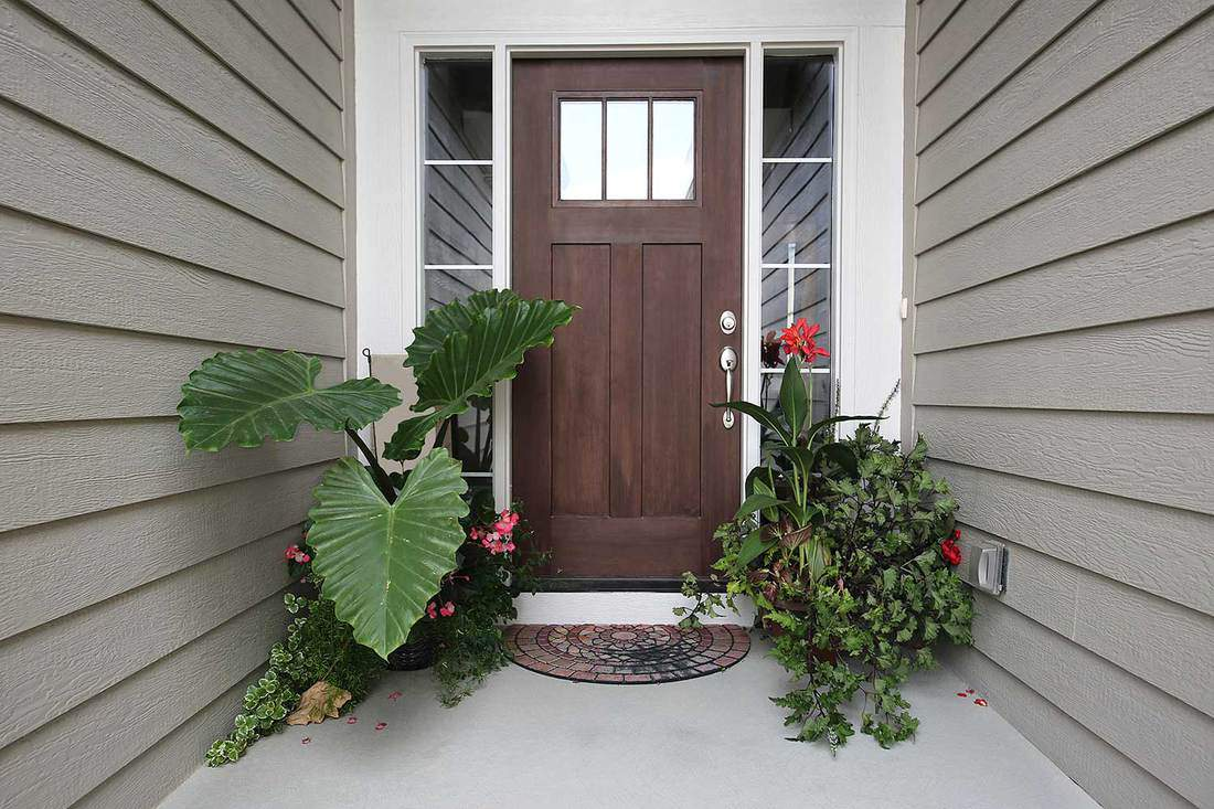 Brown front door of a wooden house with tropical plants