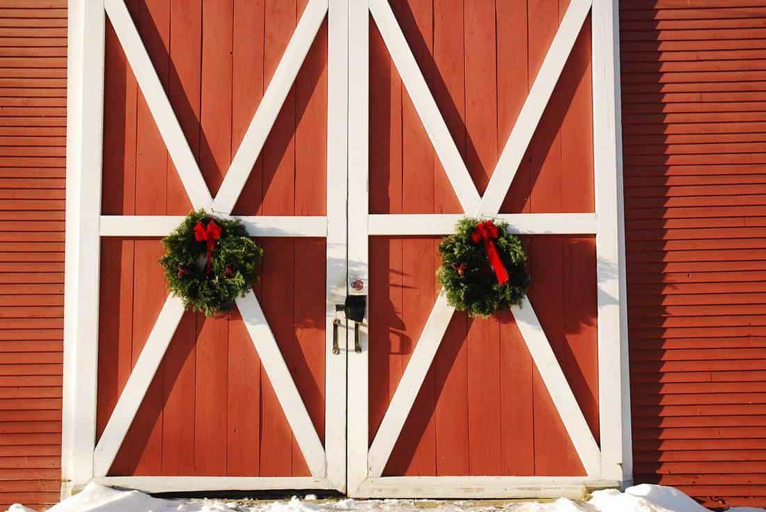 Double door of a barn with Christmas wreaths