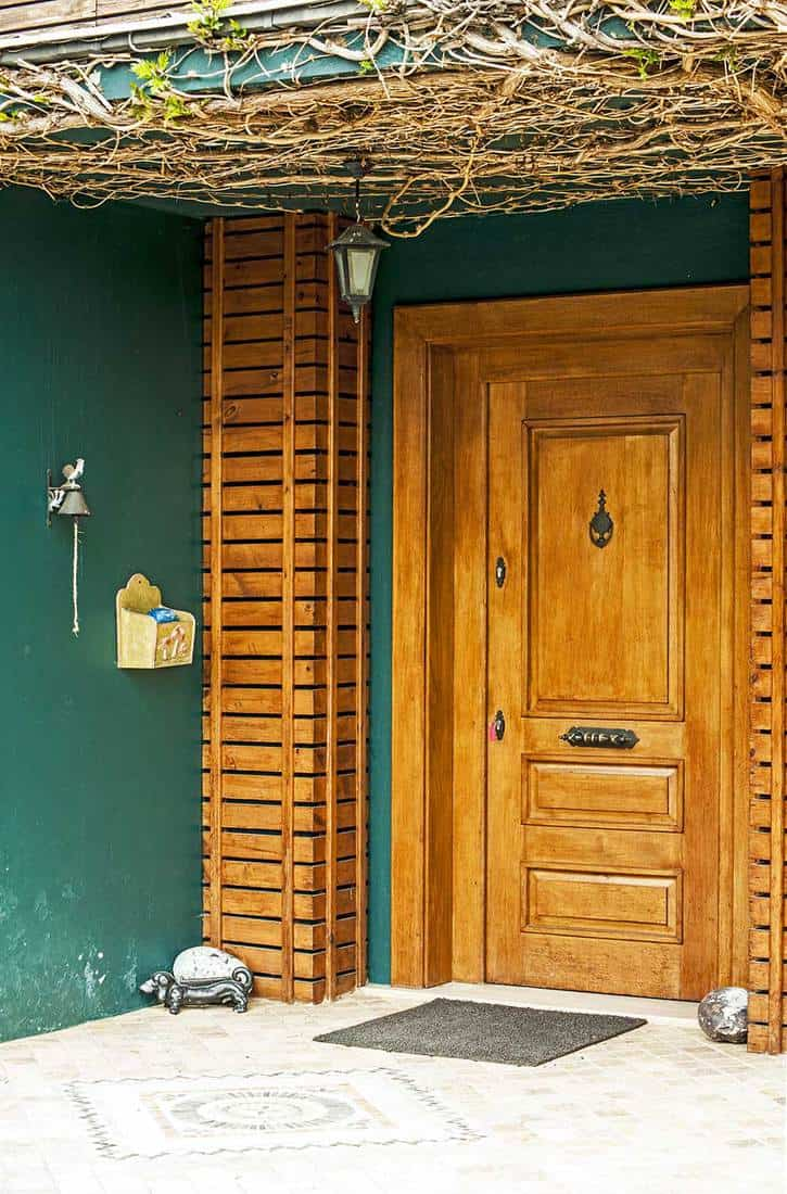 Farmhouse wooden front door with vines on the ceiling