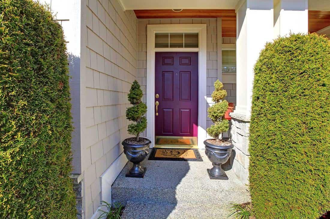 Front door in purple plum color with nice landscape
