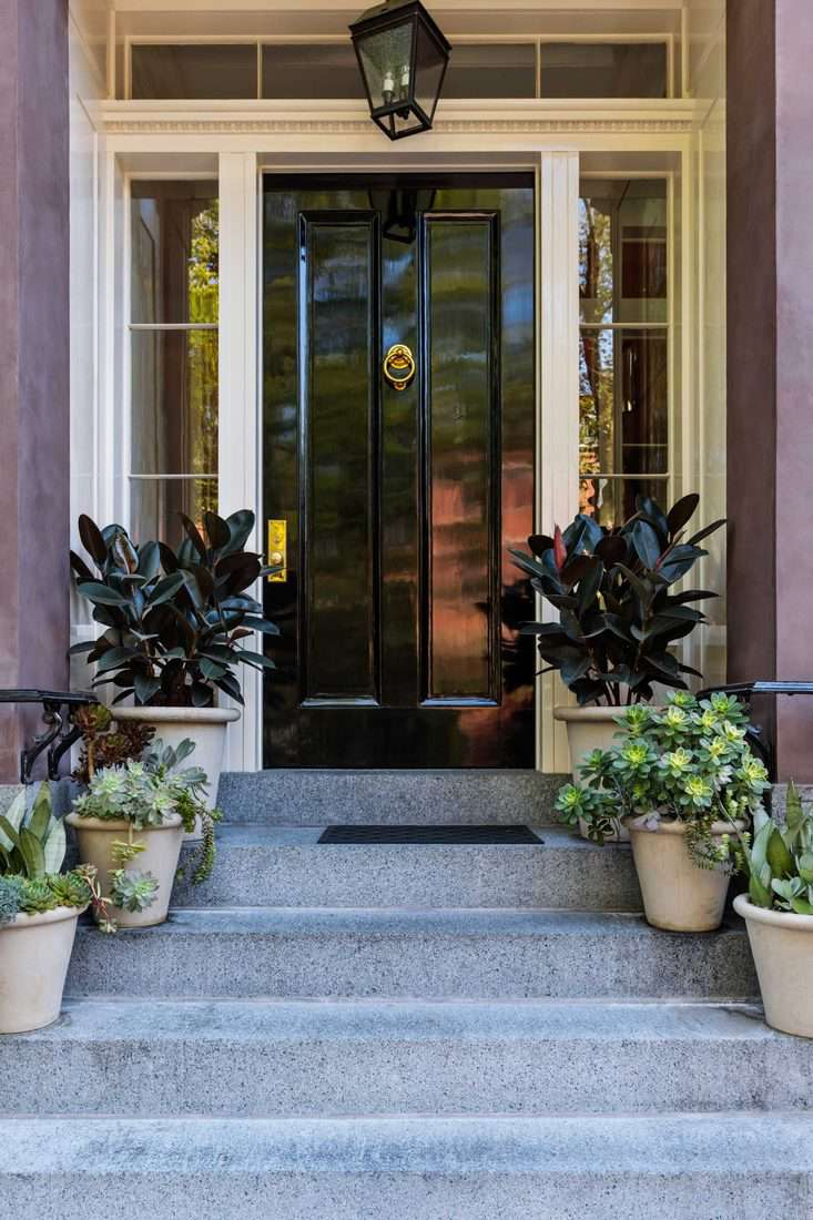 Plants placed at side of stairway and black door with golden door knob