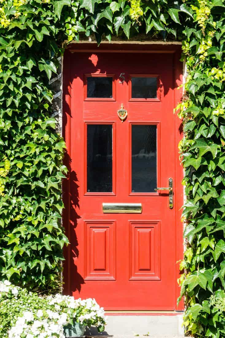 Red door with walls covered with leaves