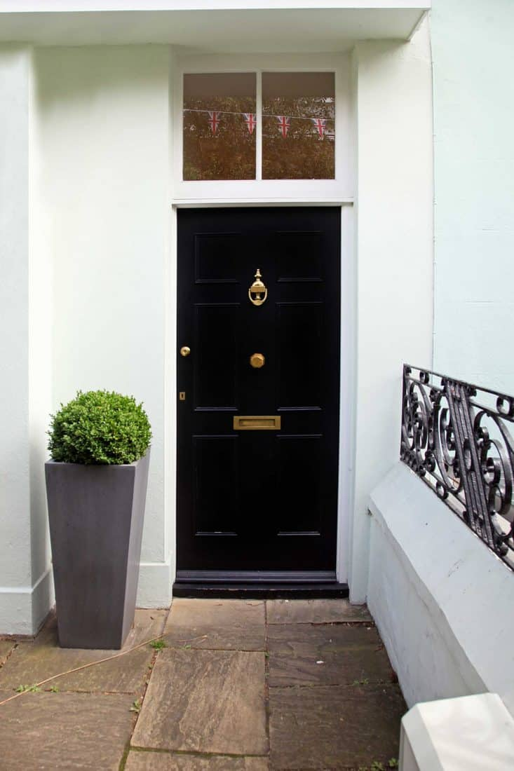White entry hall with black door and plant on dark grey vase