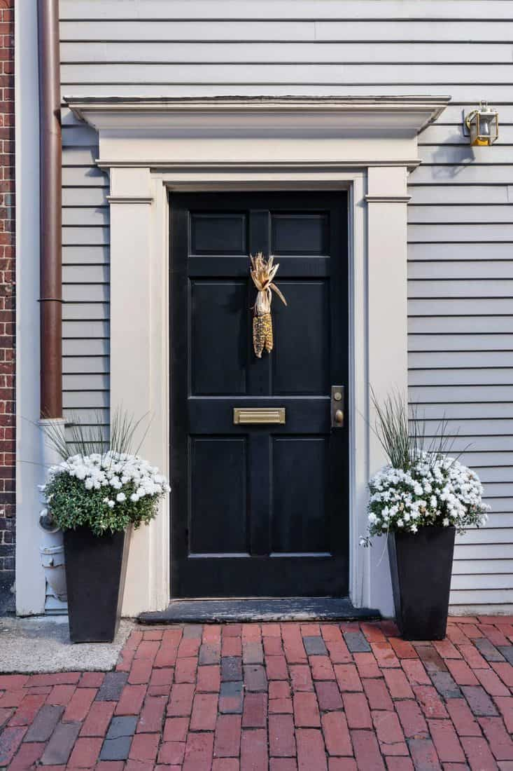 White walled facade with black door and plants on vases