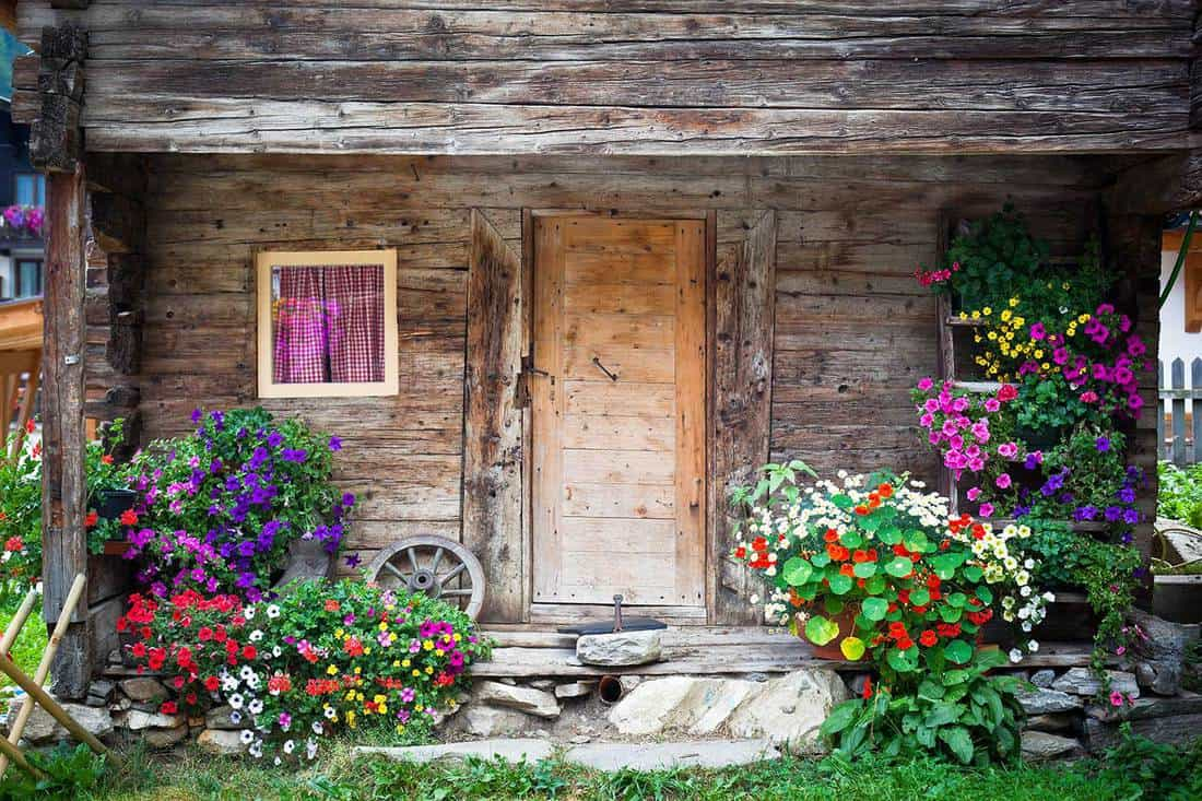 Wooden farmhouse porch with geraniums