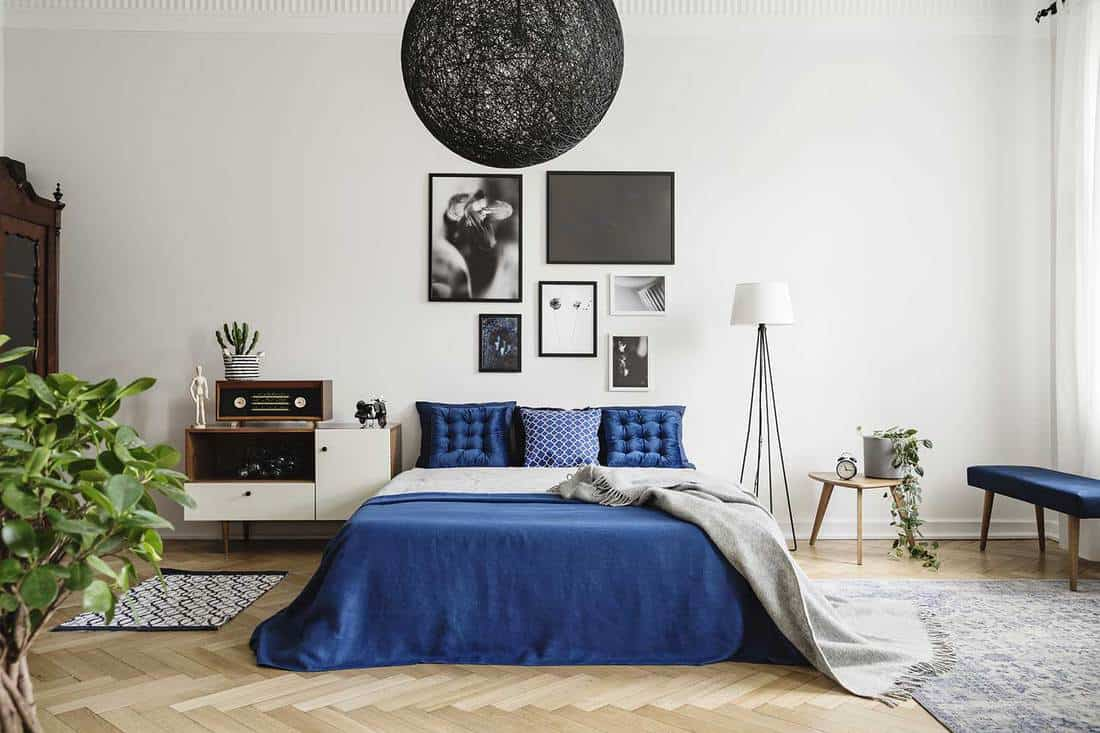 Black chandelier in navy blue bedroom in tenement house with framed art decor on wall
