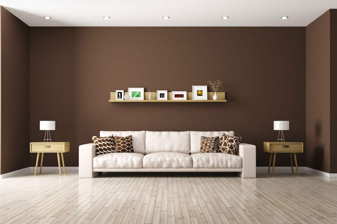 Brown walls with sofa at the middle and minimalist divider with picture frames
