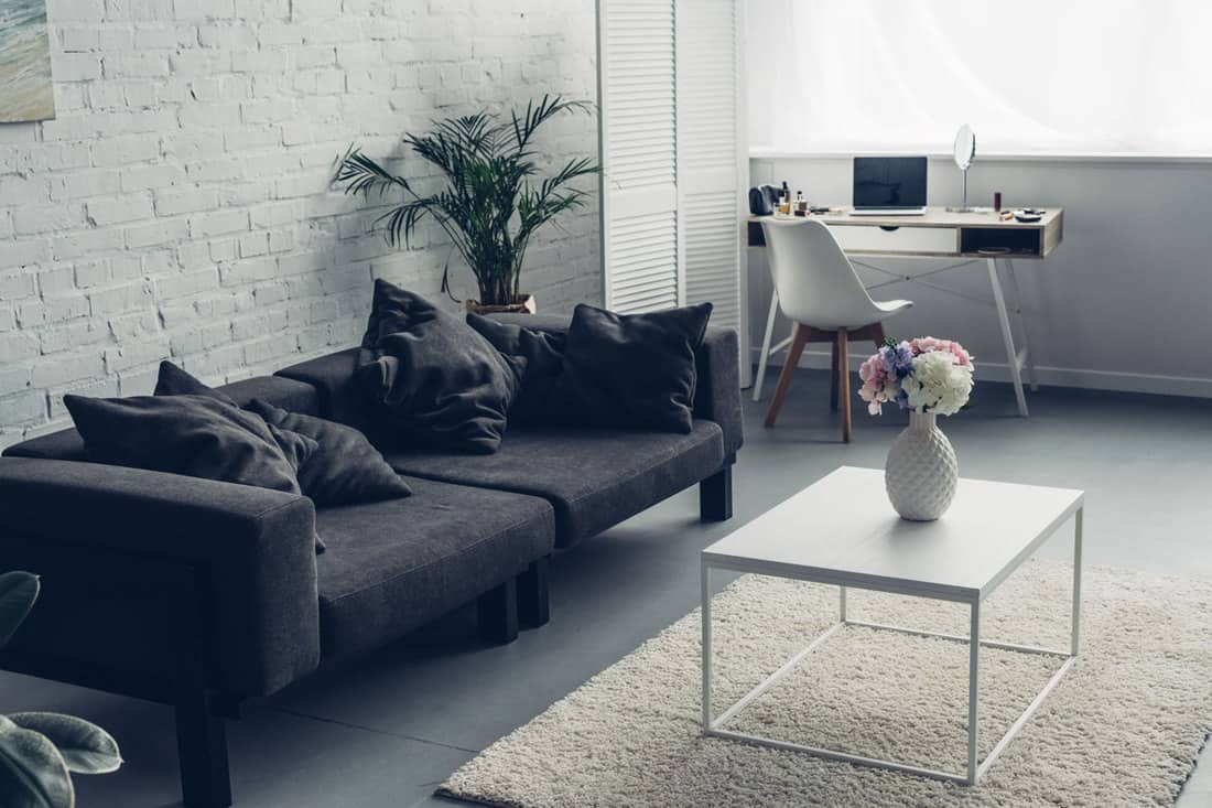 Interior of modern living room with couch and workplace with laptop