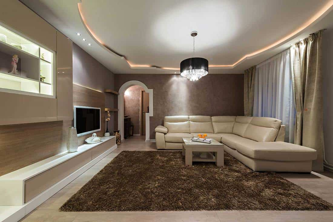 Interior shot of brown and beige luxury living room