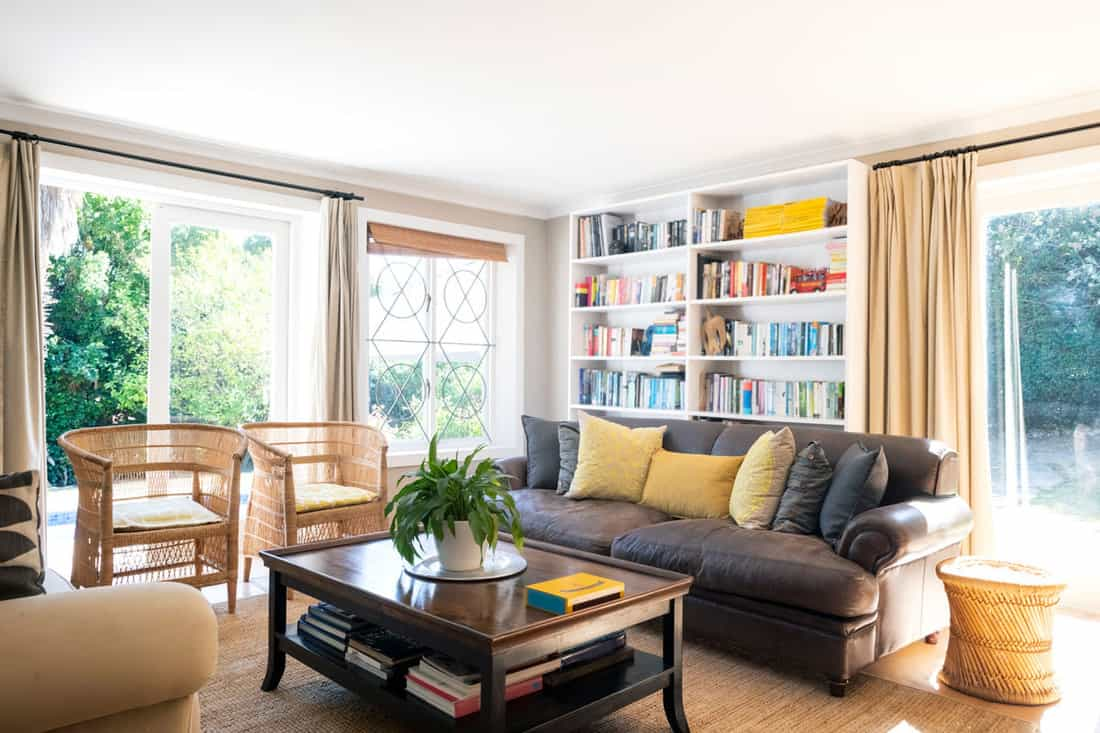 Lively living room with black sofa and bookshelf filled with books and brown curtains at windoe