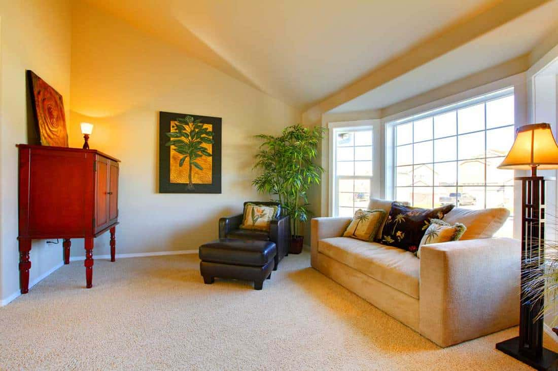 Living room with brown colored living room and long comfortable couch