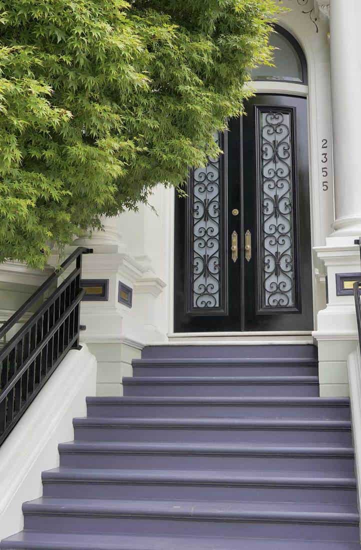 Modern black double door entrance with purple steps and black railings